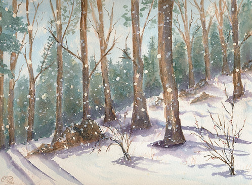 Snowfall In The Woods