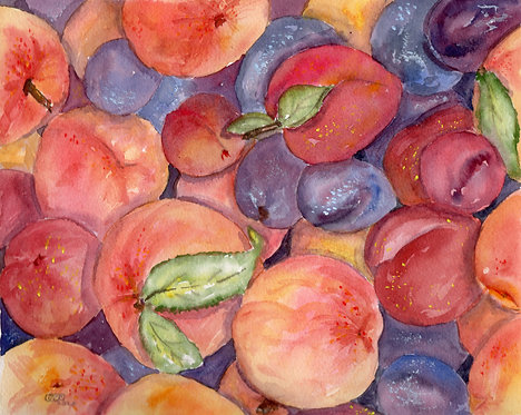 In Season - Peaches, Plums & Nectarines Too!