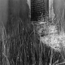 Icehouse Doorway