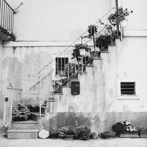 Botanical Steps