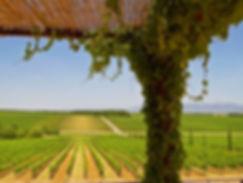 antinori winery in tuscany
