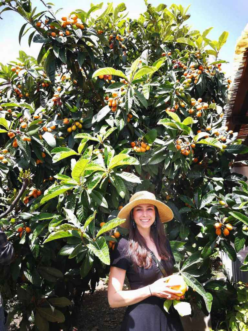 girl in sunhat and black dress smiling in front of lemon tree in Sicily