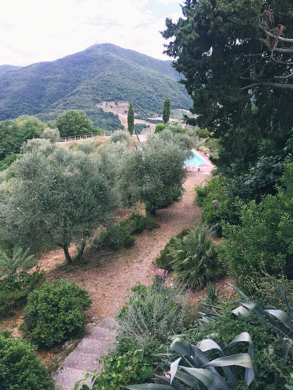 mountain in Tuscany with cyprus and olive trees and a pool
