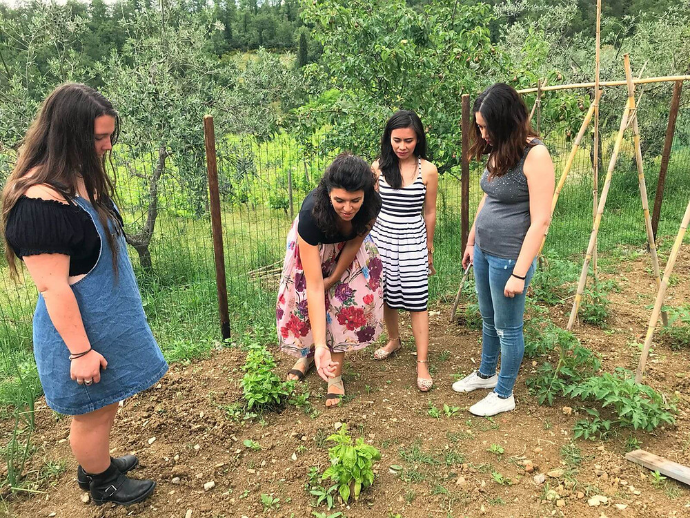 Italian woman point out a basil plant in her garden to three young women beside her