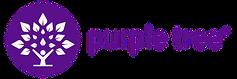 purple tree hangover pills