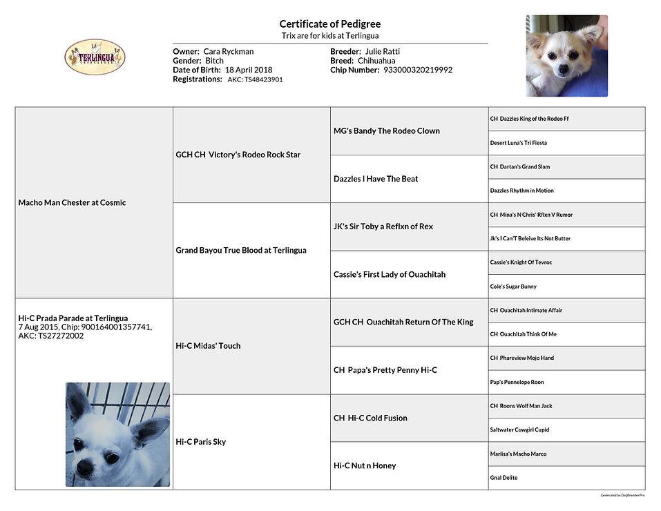 pedigree_Trix are for kids at Terlingua_2021-07-22.jpg