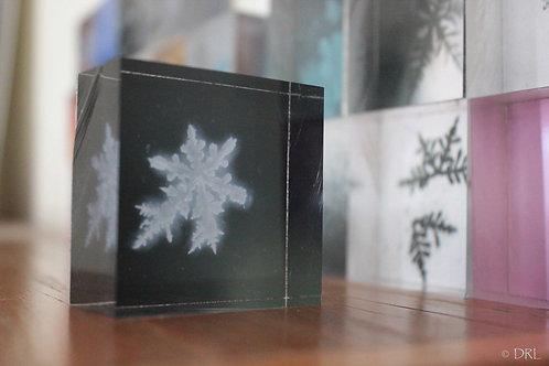 #17 Snowflake