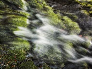 Ruisseau de la Jarrige