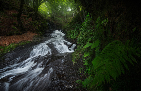 Ruisseau de Neuffonds