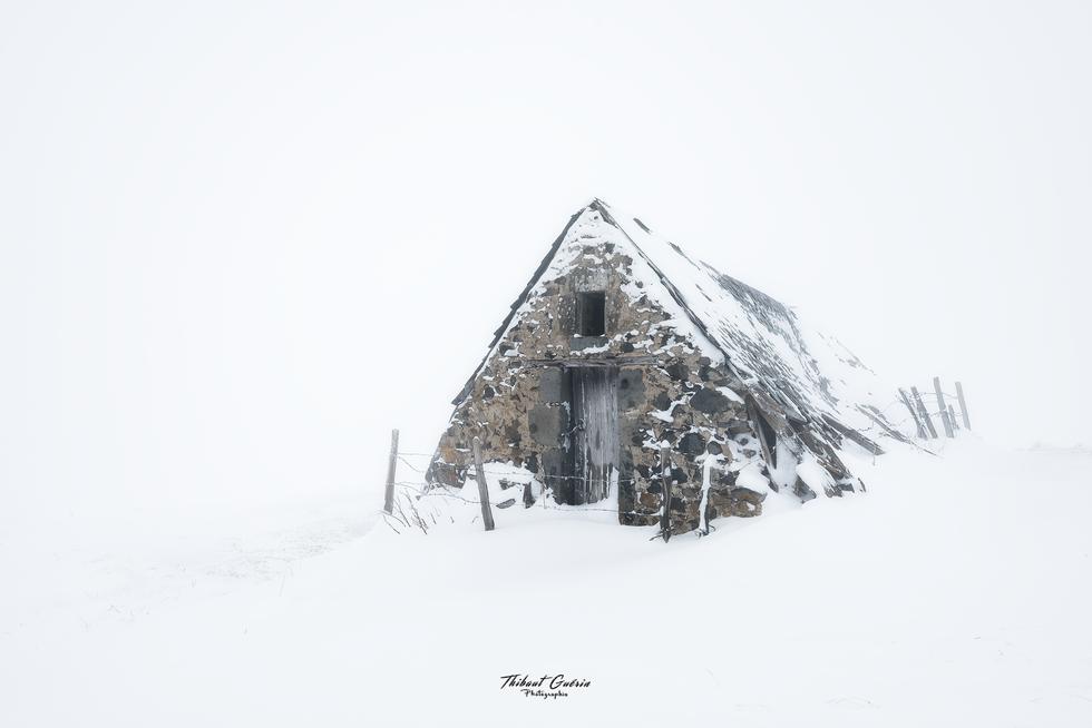 Apparition dans le blanc pure d'une matinée hivernal.