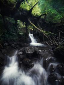 Ruisseau de la Grande Cascade