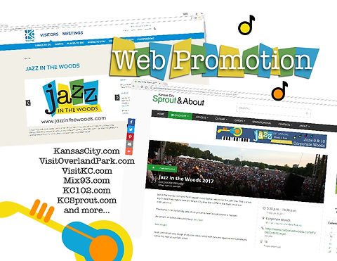 sk consulting web promotion