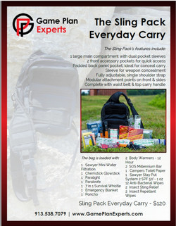 Game Plan Experts Flyer