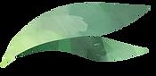 Leaf_03.png