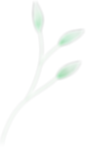 Leaves_02_edited_edited.png