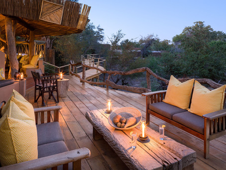 Mashatu Wildreservat in Botswana: Eine Symbiose von Naturschutz und Tourismus