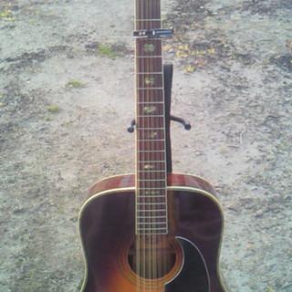 Morris 12弦