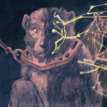 Silver Spring Monkey Love + Radio Necessary Measures ~ 600 Million Dogs Alex Pacheco