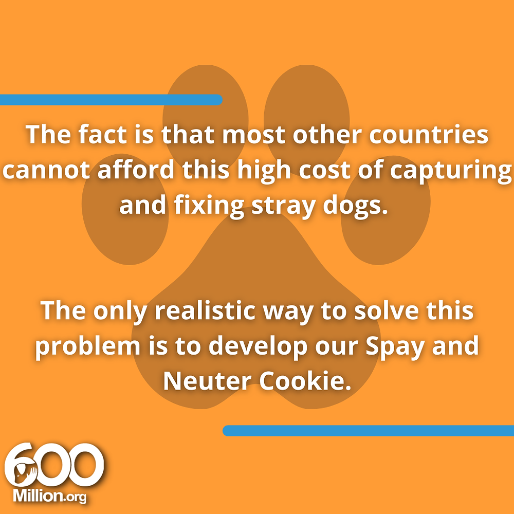 Spay and neuter cookie Alex Pacheco 600 Million Dogs