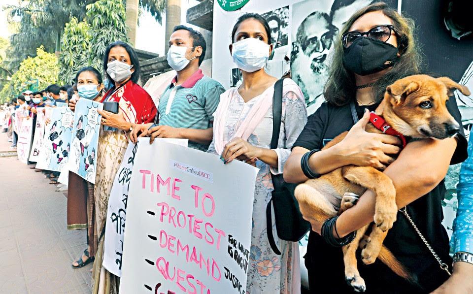 Daily Star Protest Alex Pacheco 600 Million Dogs
