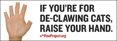 PawProject declawing cat Alex Pacheco 600 Million Dogs
