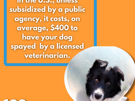 Cost of Spay and Neuter ~ 600 Million Dogs