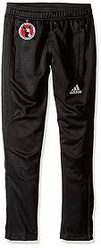 Adidas Tiro Pants logo.jpg