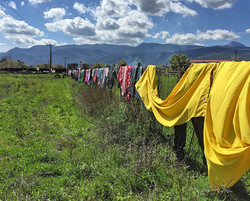 Laundry drying, © SAO Association