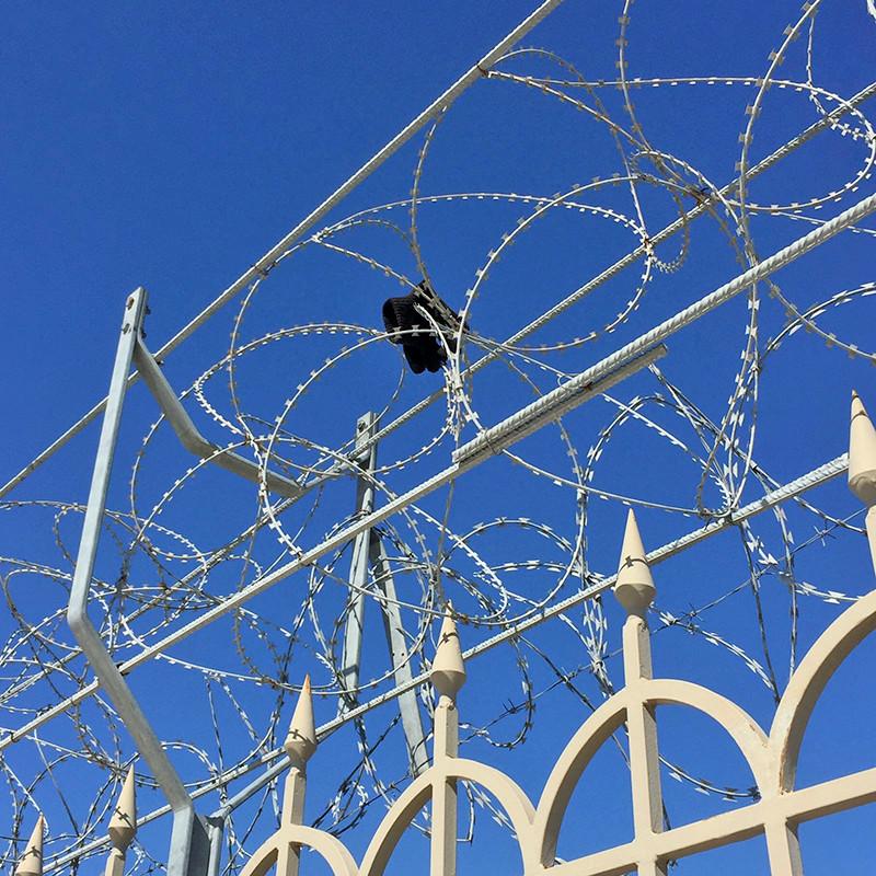 Im Hafen von Patras: Die Hoffnungslosigkeit ist mit den Händen zu greifen.