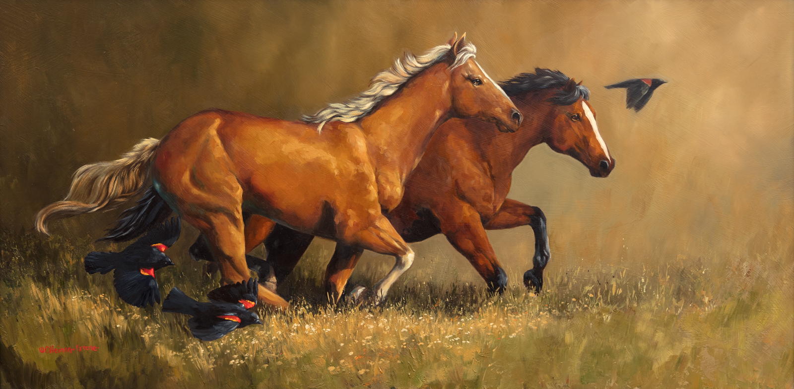 Horses/Cows