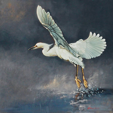 Launch Of The Snowy Egret copy.jpg