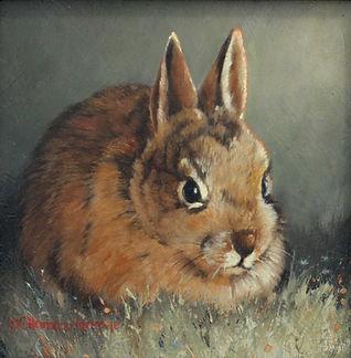 Lil Bunny.jpg
