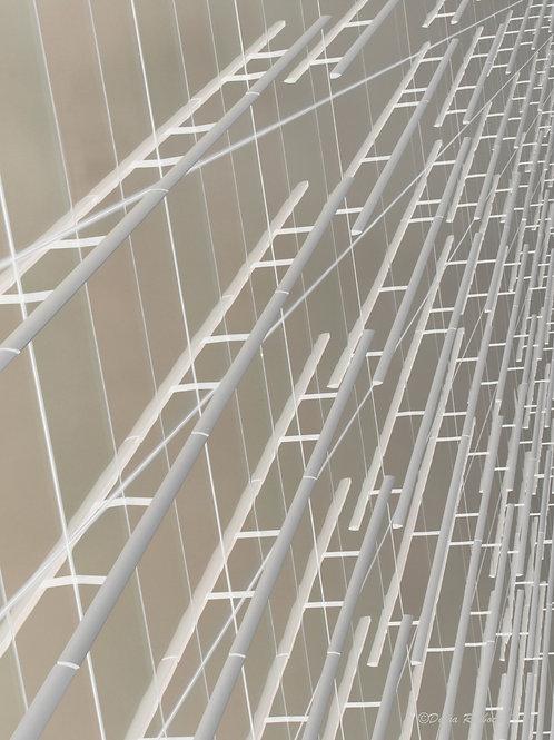 Optica 7 - Skyladders (16x20)