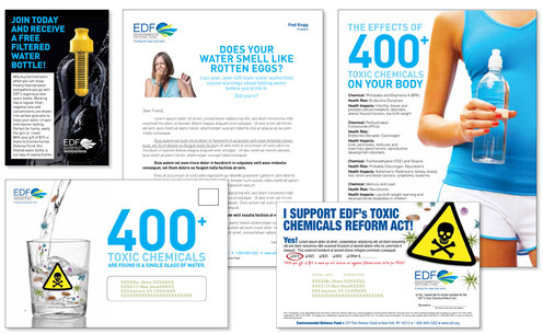 EDF Pages 1.jpg