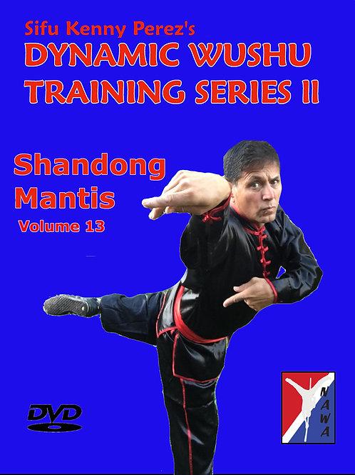 Shandong Mantis Routine