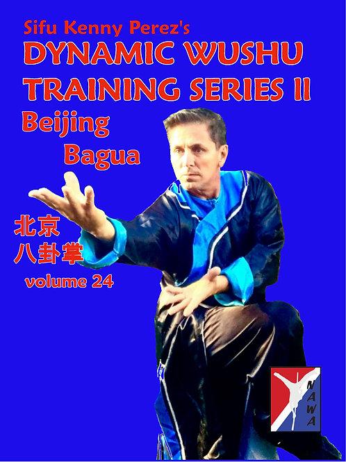 Beijing Bagua Routine
