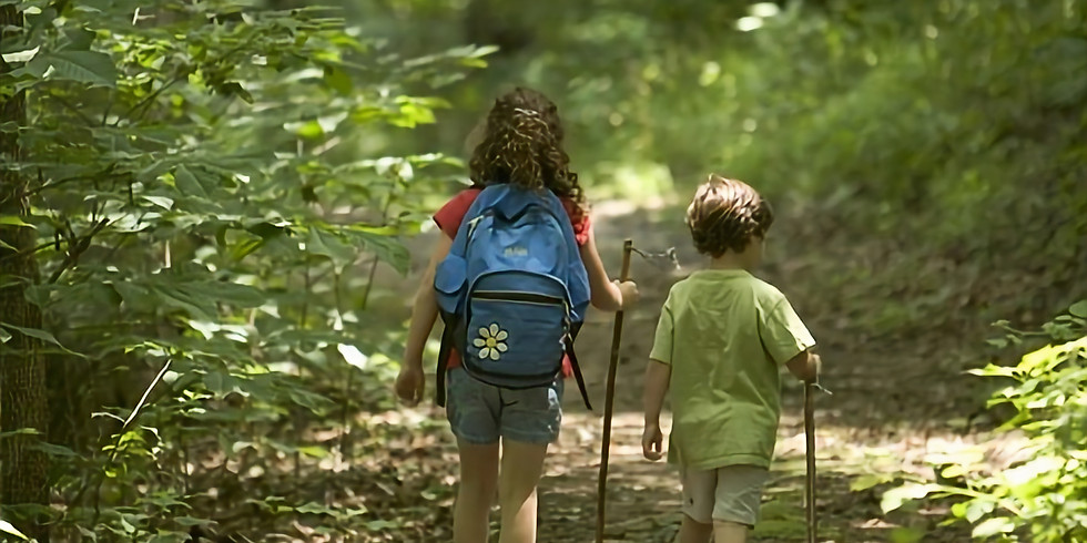 Art and Nature Walk