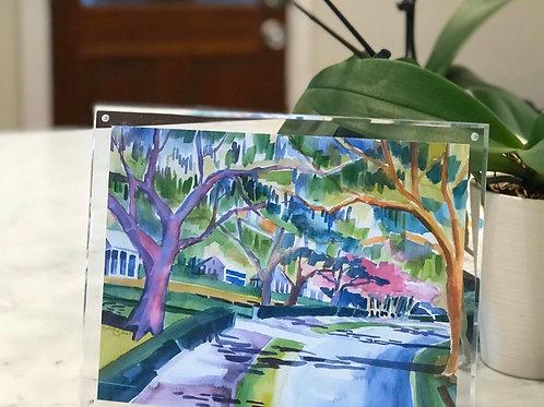 Forest Hills Canopy / Original Art Print / Framed