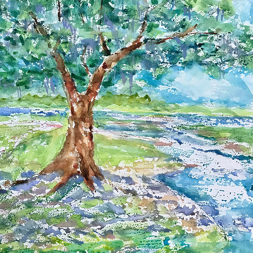 Marsh Front/ Wilmington NC / Gallery Wrapped / 12x12 / Watercolor on Canvas
