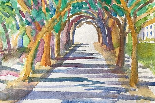"Tree Canopy Tunnel/ Original Watercolor /19""x23""/ Wilmington NC"