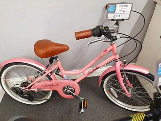 Probike mini vintage.jpg