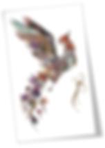 Cüneyt Gültakın_Kuşların Dili.png