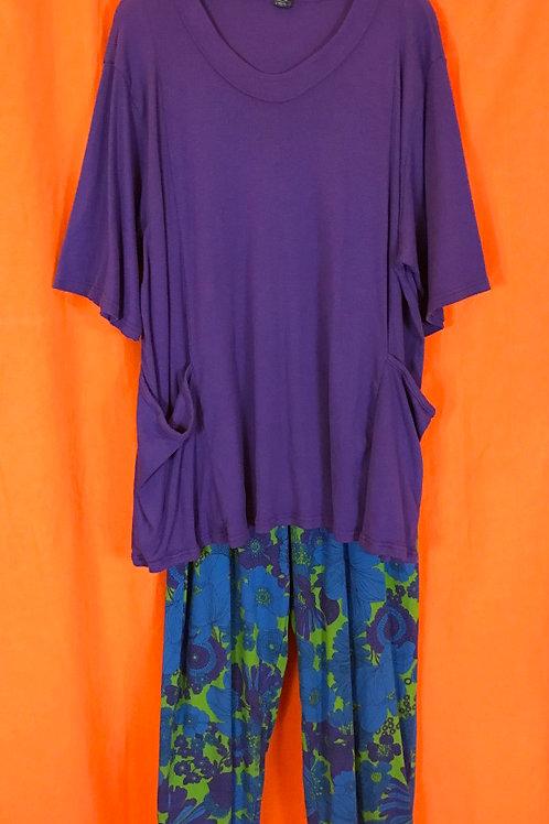 2 Piece Outfit - Purple & Blue Sz 2 (#55)