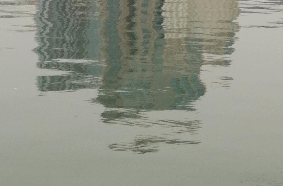 reflection bird in sharjah lake