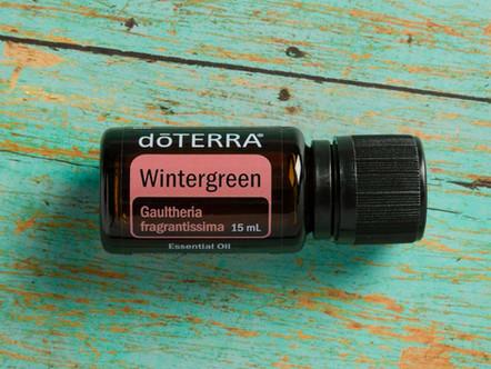 Weekly Drop of Wisdom ~ Wintergreen