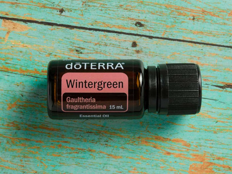Weekly Drop of Wisdom ~ Wintergreen