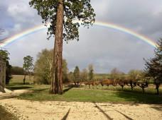 rainbow france.jpg