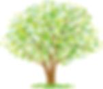 kairakuen_tree.png