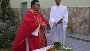 Seminário inicia sua Semana Santa com Domingo de Ramos