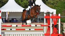 Silbermedaille bei den Bundesländer-Mannschaftsmeisterschaften in Wiener Neustadt für das Pony-Team
